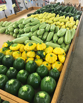 Squash Cucumber Zucchini Chevy Chase MD